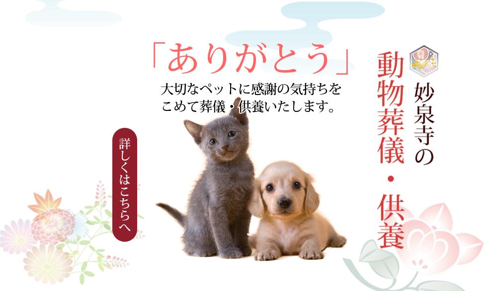日蓮宗 本覚山 【妙泉寺】  動物葬儀・供養